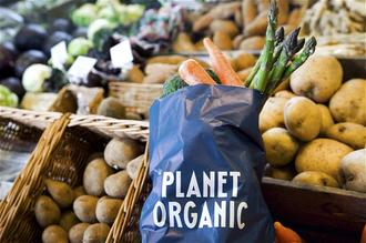 Resized planet organic banner