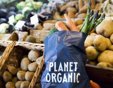Thumb planet organic banner